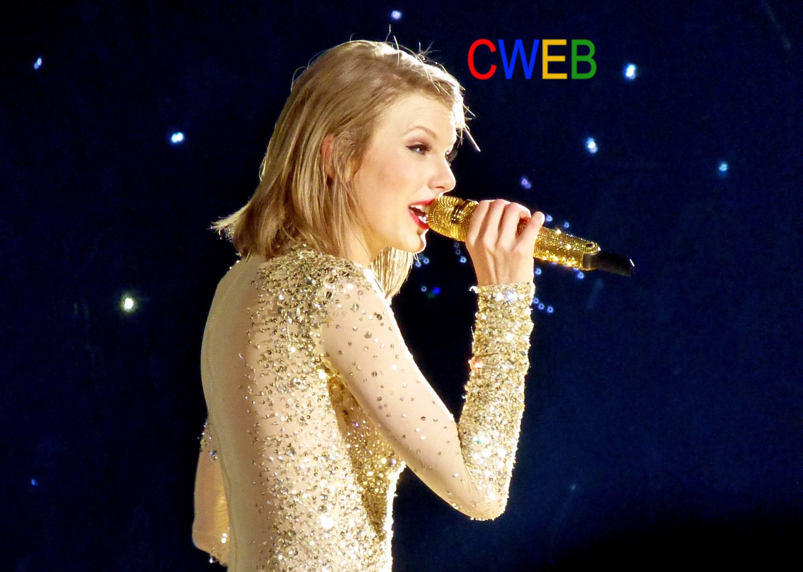Taylor_Swift_103_(18118974610) (1).jpg